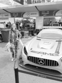 2017 Macau Grand Prix (Credit: Reproduction)